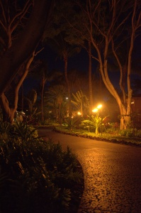 Property grounds at evening