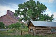 Palisade with original cabin