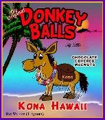 www.donkeyballskona.com