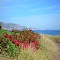 Gorgeous views and coastline