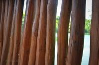 Natural wood divides